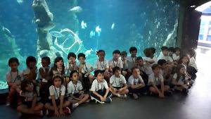 09-destacada-aquario